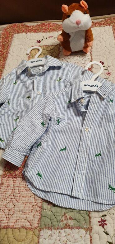 Туй голубые ели - Кыргызстан: Продаю рубашки фирменные от Ralph Lauren, состояние отличное, одевали
