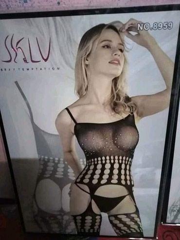 Sexy ves - Zajecar