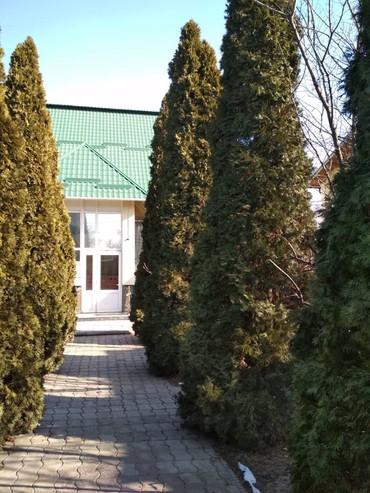 Сдается Панфилова Куренкеева 1800$ в Бишкек - фото 5