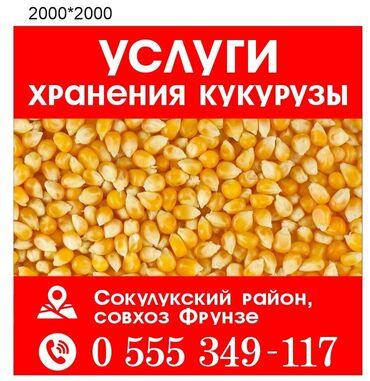 купить айфон х бу in Кыргызстан   APPLE IPHONE: Хранение кукурузы