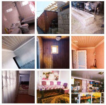 Недвижимость - Кызыл-Суу: Продаётся  дом на Иссык-кульеС.КудургуС действующим бизнесом.