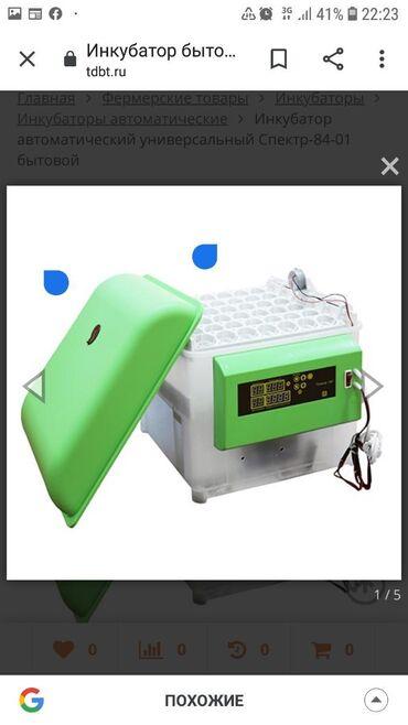 инкубаторы автоматические в Кыргызстан: Инкубатор автоматический универсальный Спектр-84-01 бытовой