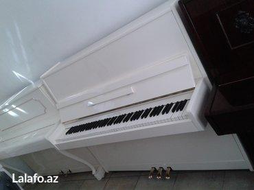 Bakı şəhərində 3 pedaalı ağ rengde Belarus pianosu - çatdırılma, köklenme ve 5