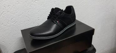 Muske cipele - Srbija: Muška Cipela Od Prirodne Kože. Dostupne sve veličine