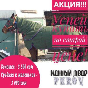 лоток-для-яиц в Кыргызстан: Попона брезентовая рабочая с флисовым подкладомБольшая Средняя и