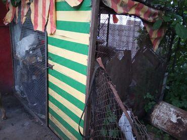 собачка рыбки в Кыргызстан: Продаю Вальер с будкой для крупной собачки или обменяю на курей