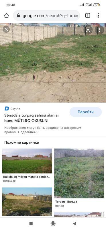 4 sot, Kənd təsərrüfatı, Mülkiyyətçi, Kupça (Çıxarış)