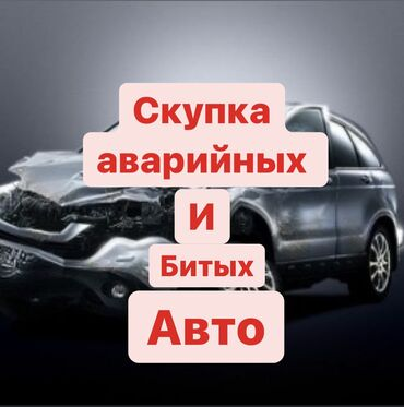 элевит 2 цена бишкек в Кыргызстан: Скупка(выкуп) аварийных,битых,после дтп авто.Хорошая оценка