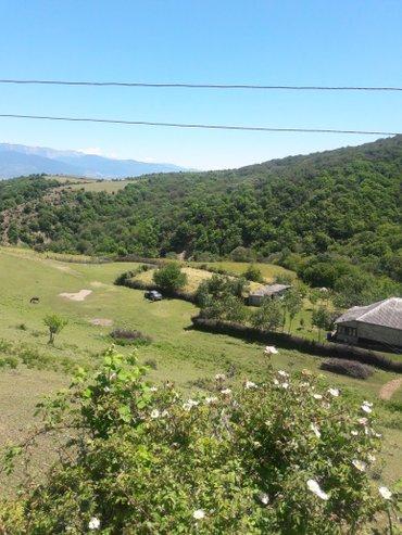 Bakı şəhərində Torpaq sahesi Ismayilli rayon zogalliq kendinde yerlesir. Rayon