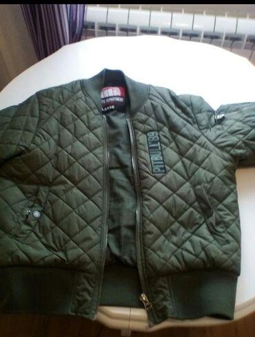 Muska jakna PITBULL  Original 3400 din