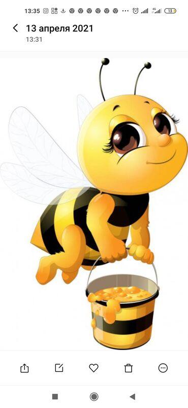 72 объявлений: Продается Восточно Казахстанский мед. Гречиха с разнотравьем. Качество