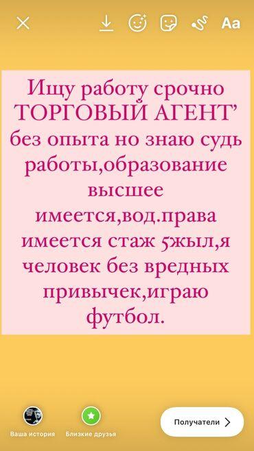 Работа торговый агент - Кыргызстан: Торговый агент. Без опыта