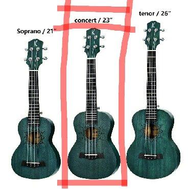 Гитары в Кыргызстан: Укулеле ukulele CONCERT КОНЦЕРТ 23 дюйма 4 струны, выпуклая дека -