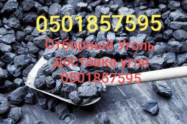 неоновые надписи бишкек в Кыргызстан: Уголь отборный с доставкой на дом. Шабыркуль  Кара-Жара  Кара-Кече