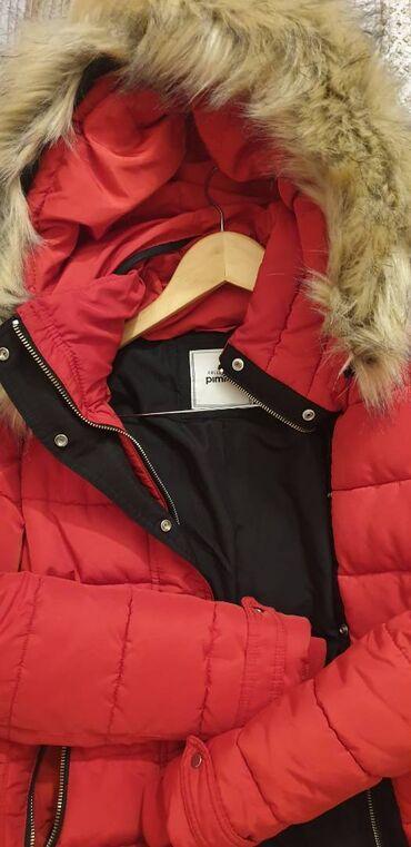 11083 elan: Зимняя теплая куртка-дутик. В очень хорошем состоянии. Капюшон и мех