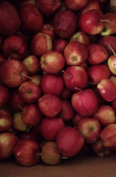 Продаю яблоко апорт Алма сатылат 38 сом