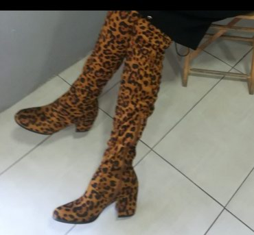 Tigraste preko kolena fantastična - Batajnica