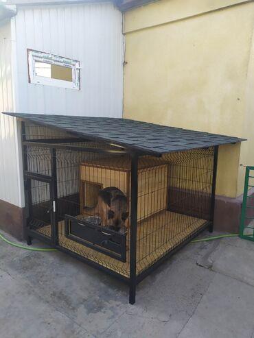 Вольер Вальер Будка Вольер для собаки Зоотовары aviary Dog На первом ф