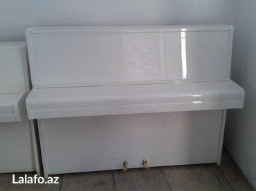 Bakı şəhərində Tam yeni scholze markalı piano - Çexoslovakiya istehsalı, ideal- şəkil 3