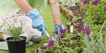 В  частный дом нужны садовники в Бишкек