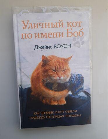 Уличный кот по имени Боб. Писать на WhatsApp