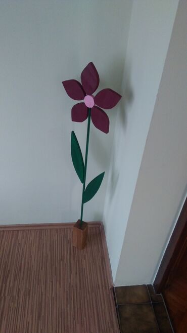 Ostalo | Futog: Dekorativni cvet