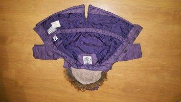 Palomino jakna vel. 98 - Prokuplje