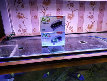 Akvarium üçün kompressor iki çıxışlı aquatec 5w səssiz