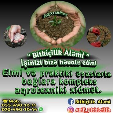 Bakı şəhərində Bağ xidmətləri