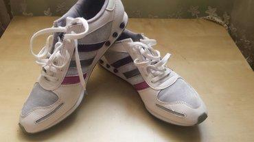 Ženska patike i atletske cipele | Veliko Gradiste: Adidas patike prelepeBr 40 ali uzak kalup -model pa mi male Nosene