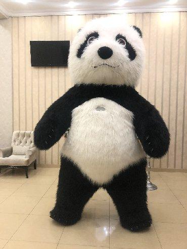 Biznes təklifi! Panda satılır, yeni (bir nece eded), istifadəsi öyrədi
