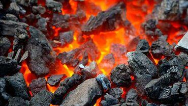 элевит 2 цена бишкек в Кыргызстан: Уголь шабыркуль каражыра каракече беш Сары, отборный крупный Вес и