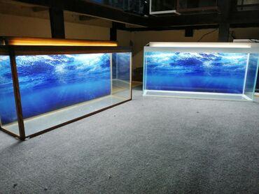 1metrelil Akvariumlar aq və tünd venge rəngdəBaşqalarıda var seçim