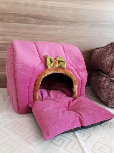 Pisikler ucun yeni yataq.catdirilma pulsuz
