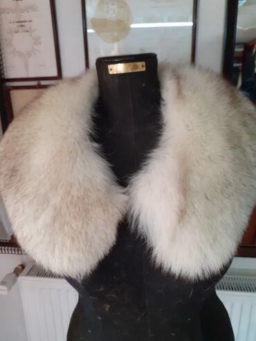 Krzneni kaputi - Sremska Mitrovica: Kragna od.polarne lisice Prirodno krzno