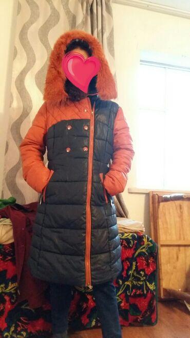 Куртки - Кок-Ой: ДОГОВОРНАЯ   Куртка зимний цена 1200 сом B/y