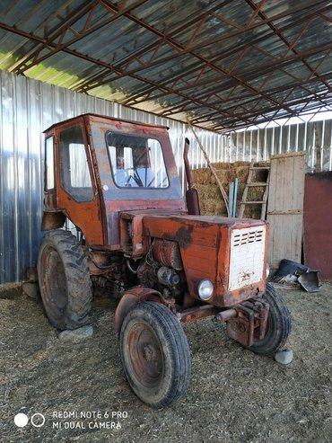 купить трактор т 25 бу в Кыргызстан: Продаю трактор Т-25