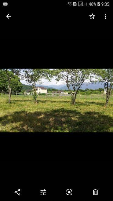 Torpaq sahələrinin satışı 19 sot Tikinti, Mülkiyyətçi, Müqavilə