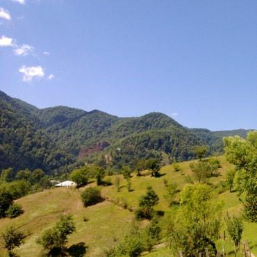 cülyan kəndi - Azərbaycan: Xalis təbii dağ meşə balımız Astara rayonun ən ucqar dağ kəndi olan