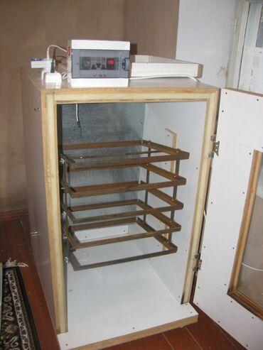 инкубатор апарат в Кыргызстан: Принимаем заказ инкубатор апарат автомат пол автомат. Гарантия 85+-90