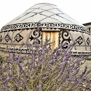 голые в Кыргызстан: БОЛЬШИЕ ЮРТЫ 125 ГОЛОВАЯ 14 КАНАТНАЯ ДИАМЕТР 9МЕТРОВ.Цена
