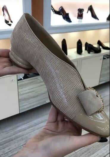 Kozne cipele - Srbija: Cipele 37 nove koza