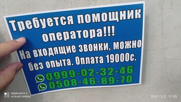 Услуги ветеринара - Кыргызстан: Работа в Бишкеке!!! Заранее сразу звоните мне по номеру!!! Номер на ка