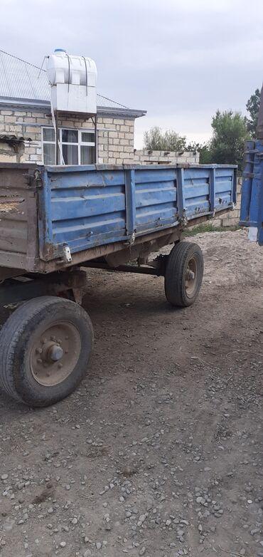qosqu lapet - Azərbaycan: Lapet işlək vəzyədədi