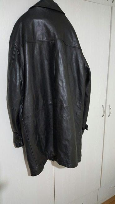 Kozna-jakna-br-laura-sctt - Srbija: Kozna muska jakna