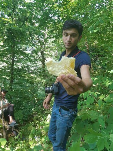 bitkilər - Azərbaycan: Təbii arı balı. çox sərfəli qiymətə.Taliş dağlarında bitən bitkilərlə