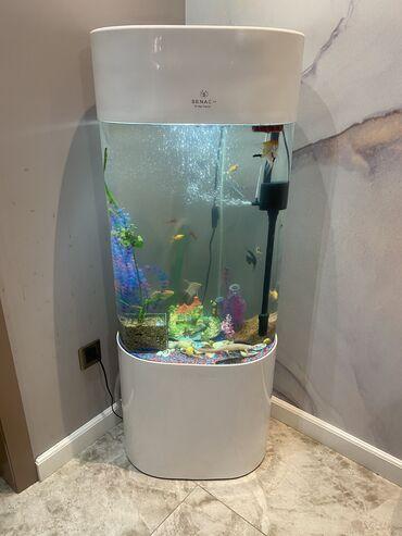 Продаю очень красивый аквариум 140 литров со всем что на фото ( филь