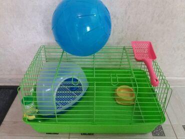 Продаю благоустроенный домик для морской свинки, декоративного кролика