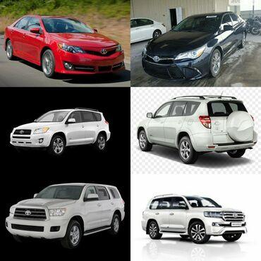 Автозапчасти Toyota / Lexus Кузовные детали Оригинал и Дубликат Фары