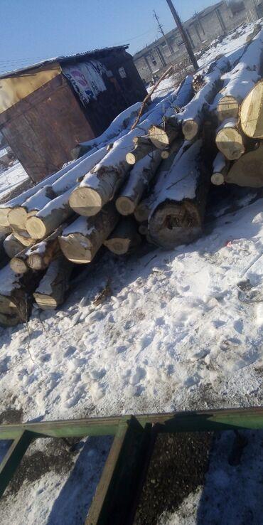 подработка в кара балте в Кыргызстан: Терек. Алам